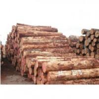 灵川收购松木企业一览表