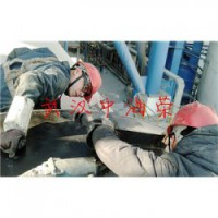 武汉中海荣特焊科技轮带修复服务