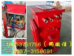 功率700W电源DXBL2880/220J矿用防爆UPS电源