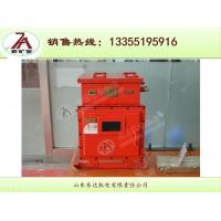 DXBL1536/220J锂电池电源用于煤矿两路输入