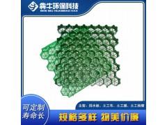 秀山县欢迎来电绿化塑料植草格