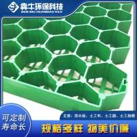 宁波市厂家供应小区绿化种草植草格多规格