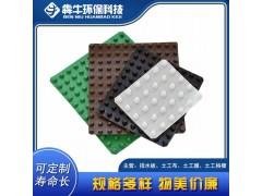贺州市资讯hdpe绿化种植排水板厂家可定制