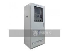 天禹智控TY-8300煤气在线分析系统