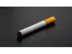 生产听话型香烟批发供应价格