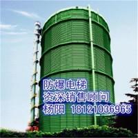 供应湖北省武汉市防爆电梯、煤气柜电梯